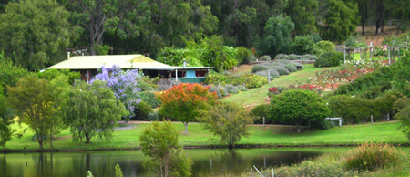 Pemberton Lavender and Berry Farm Cafe and Cottages - Kalgoorlie Accommodation