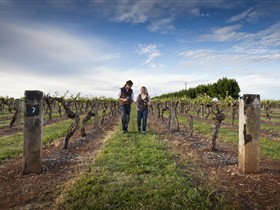 Coonawarra Wineries Walking Trail - Kalgoorlie Accommodation
