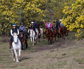 Burnelee Excursions on Horseback - Kalgoorlie Accommodation