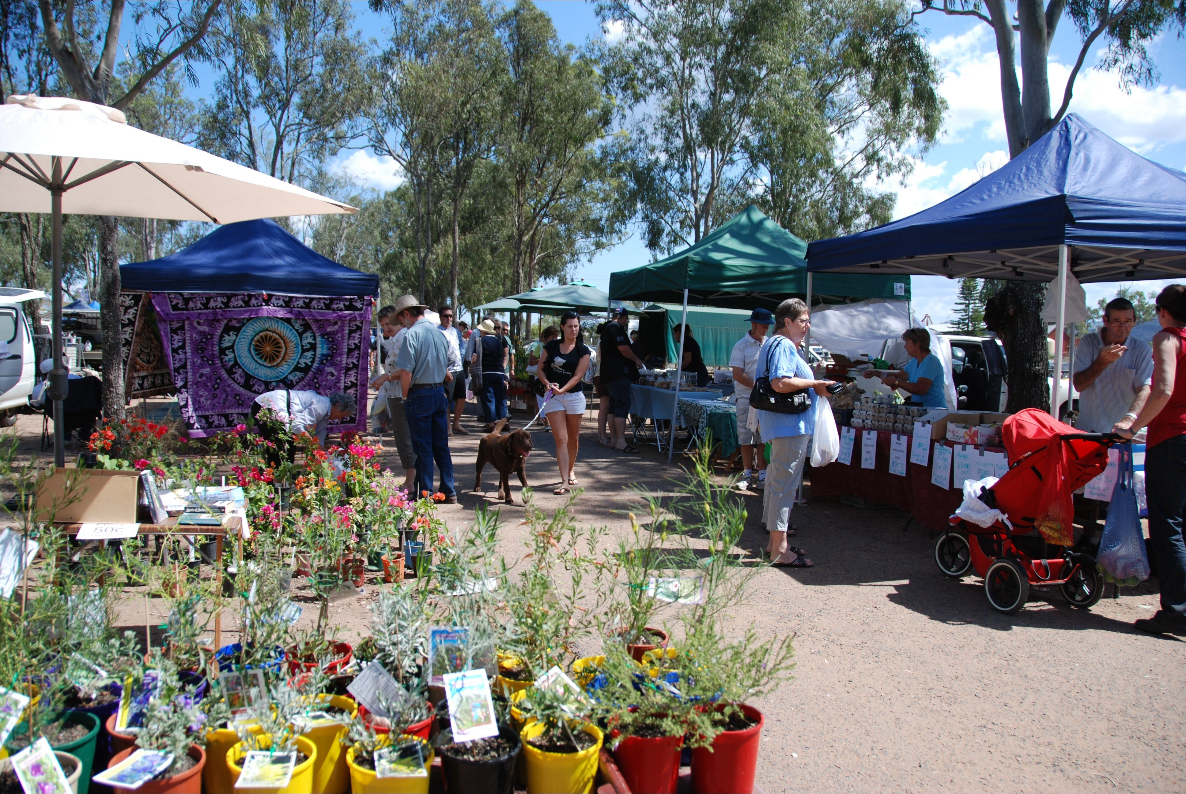 Fernvale Country Markets - Kalgoorlie Accommodation